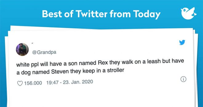 white ppl will have a son named Rex they walk on a leash but have a dog named Steven they keep in a stroller