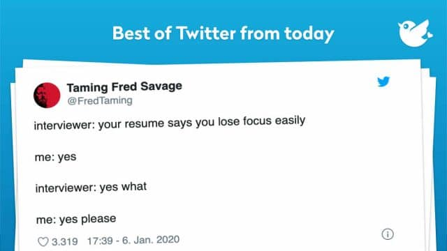 interviewer: your resume says you lose focus easily me: yes interviewer: yes what me: yes please
