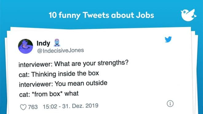 interviewer: What are your strengths? cat: Thinking inside the box interviewer: You mean outside cat: *from box* what