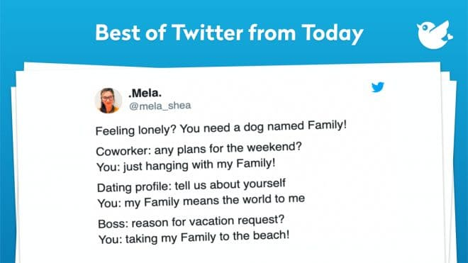 Feeling lonely? You need a dog named Family! Coworker: any plans for the weekend? You: just hanging with my Family! Dating profile: tell us about yourself You: my Family means the world to me Boss: reason for vacation request? You: taking my Family to the beach!