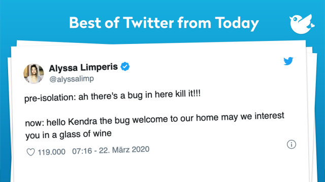 pre-isolation: ah there's a bug in here kill it!!! now: hello Kendra the bug welcome to our home may we interest you in a glass of wine