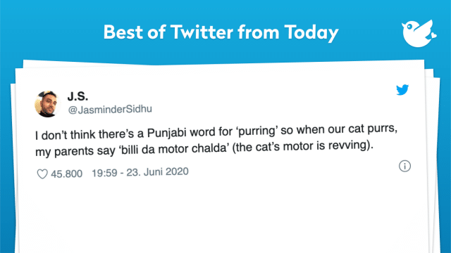 I don't think there's a Punjabi word for 'purring' so when our cat purrs, my parents say 'billi da motor chalda' (the cat's motor is revving).