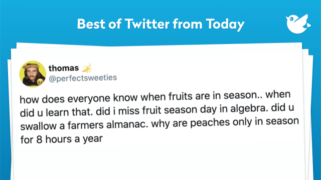 how does everyone know when fruits are in season.. when did u learn that. did i miss fruit season day in algebra. did u swallow a farmers almanac. why are peaches only in season for 8 hours a year