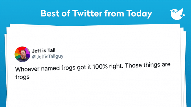 Whoever named frogs got it 100% right. Those things are frogs
