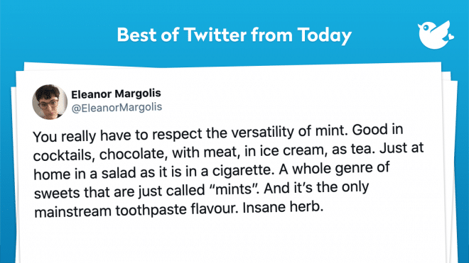 "You really have to respect the versatility of mint. Good in cocktails, chocolate, with meat, in ice cream, as tea. Just at home in a salad as it is in a cigarette. A whole genre of sweets that are just called ""mints"". And it's the only mainstream toothpaste flavour. Insane herb."